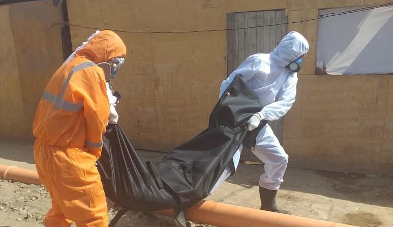 El cuerpo sin vida ha sido recogido sobre las 2 de la tarde de hoy. Foto: Cedida