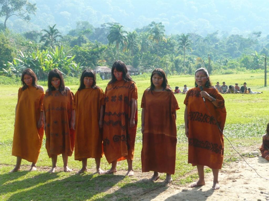 La comunidad nativa Tansoshiari se ubica en el río Pagoreni, en la zona del Bajo Urubamba. Foto: Cedida