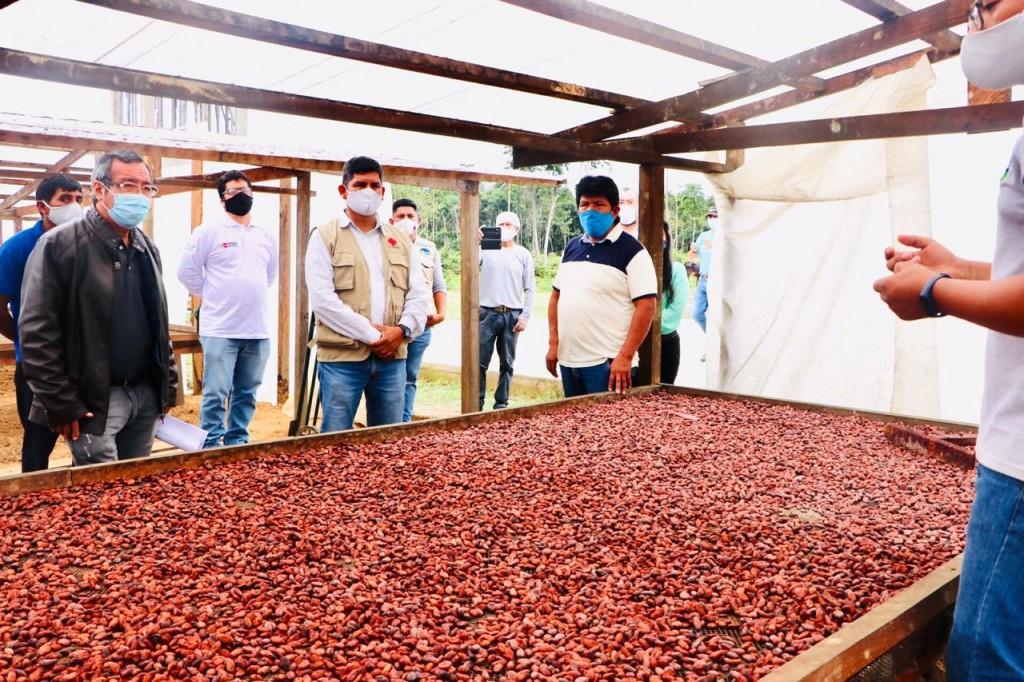 La Asociación El Progreso se ubica en el km 86 de la carretera interoceánica. Foto: Cáritas MDD