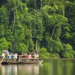 Reserva Nacional de Tambopata. Foto: Pavel Martiarena