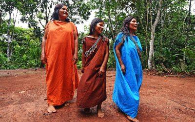 Aprueban plan para enfrentar covid-19 en comunidades indígenas y poblados amazónicos