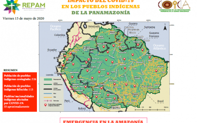 Coica y Repam lanzan mapa de impacto del COVID-19 en los pueblos indígenas de la Panamazonía