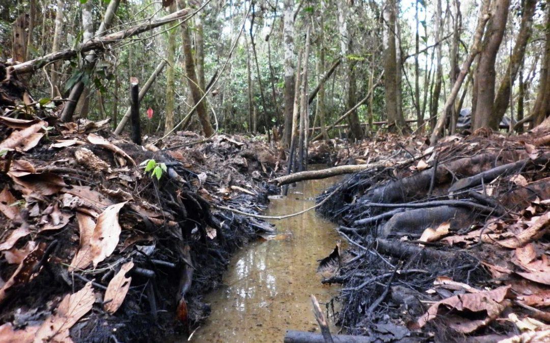 Declaran estado de emergencia por derrame de petróleo en Urarinas y Parinari