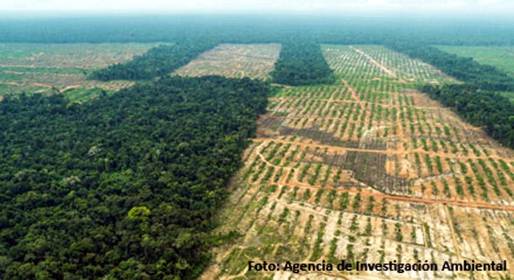 Liquidación total: comercio agrario en Perú