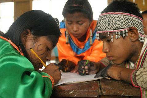 Comprensión lectora de escolares indígenas peruanos se duplica de 2012 a 2014