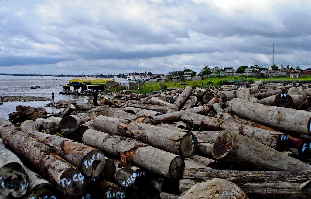 Comunidad nativa denuncia falsificación de documentos para facilitar extracción de madera en su territorio