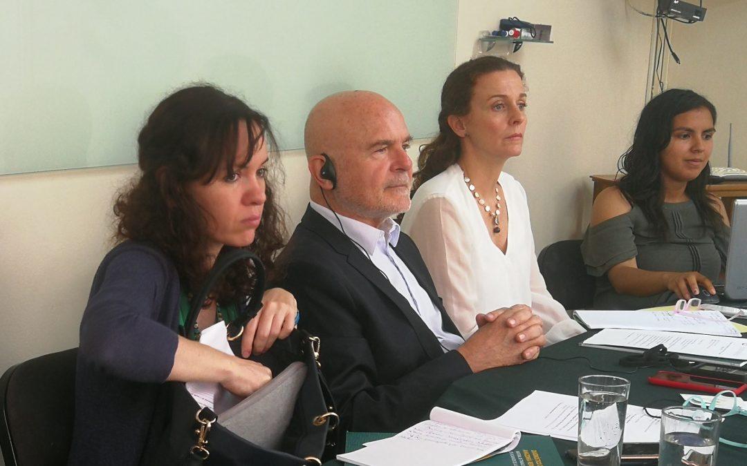 Naciones Unidas publica la declaración final y oficial del relator de Derechos Humanos, Michel Forts, tras su visita a Perú