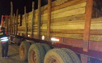 Detienen a exgerentes forestales de Madre de Dios implicados en tráfico ilegal de madera