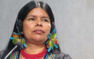 «Amazonizar es que, quien creía saberlo todo, re-aprenda mientras el olvidado le enseña». Patricia Gualinga, lideresa indígena de Ecuador