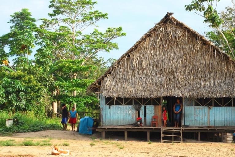 Comunidad Shipiba de la Amazonía peruana exige a las Naciones Unidas proteger su territorio amazónico de una apropiación de tierras autorizada por el gobierno