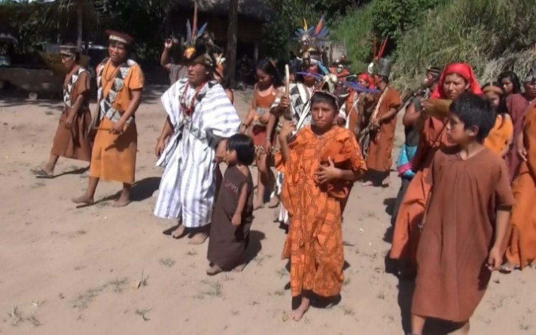 ONU otorga premio climático a proyecto «Forestlink» en Perú
