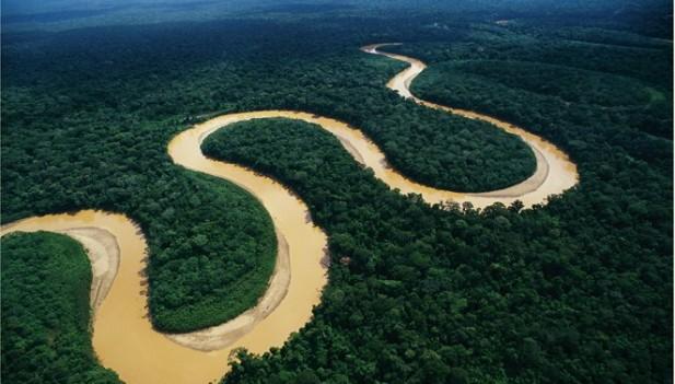 Editorial: La Amazonía redescubierta