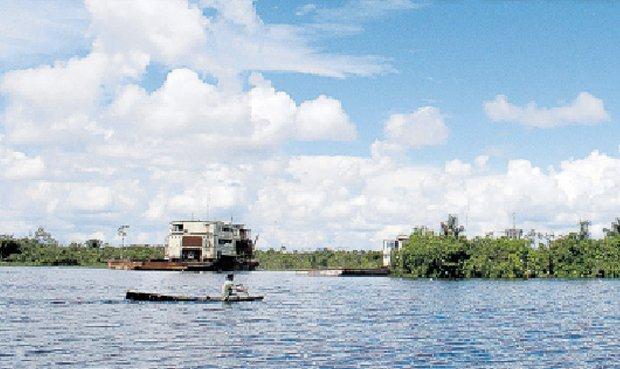 Mapas interactivos con información para saber el estado de la Amazonía