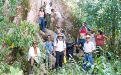 Comunidades, y no financiadores, deben gestionar los bosques