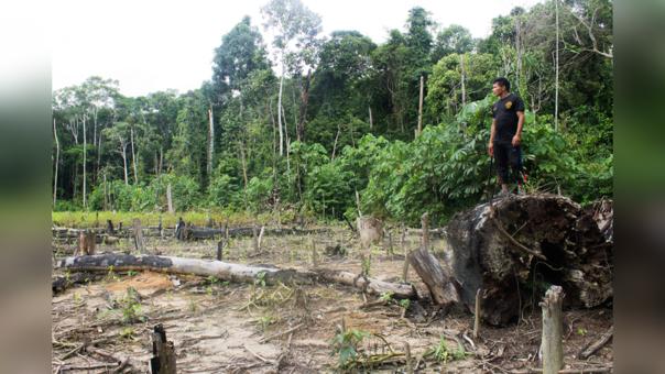 Las comunidades shipibos-konibos han logrado detener la destrucción de sus bosques por medio de drones