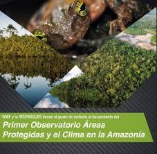 Lanzan primer Observatorio Amazónico de Áreas Protegidas y Cambio Climático