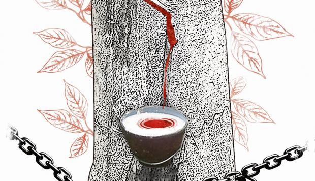 Memoria y sanación, por Gonzalo Portocarrero