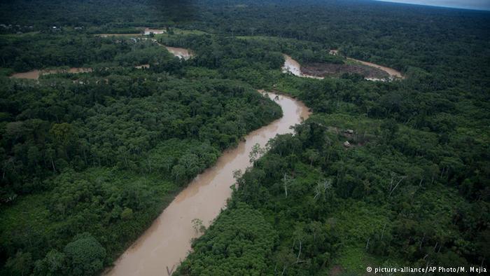 Colombia, Ecuador y Perú apuestan por incluir un enfoque indígena en la gestión de los bosques