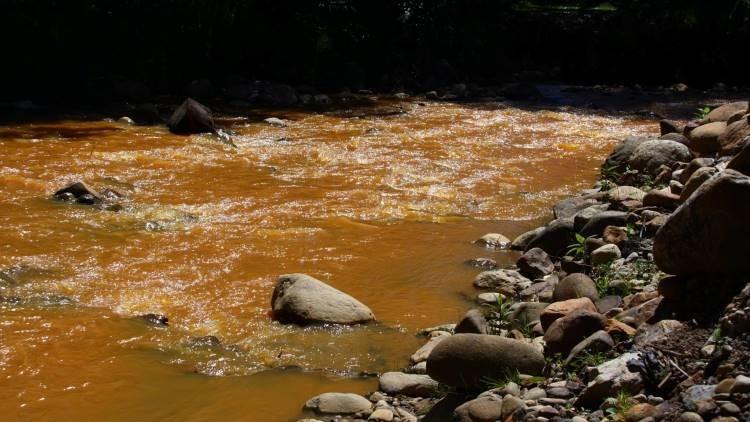 Fotos, Video: La Amazonia peruana vive una verdadera catástrofe ecológica