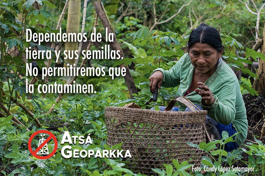 Petrolera Geopark anula su contrato de explotación del lote 64 en la Amazonía norte de Perú
