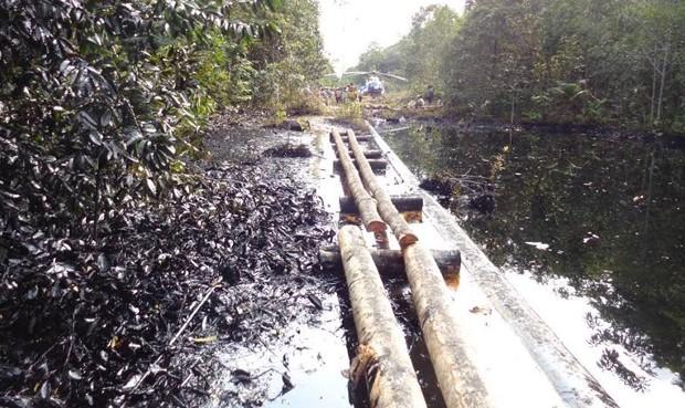 OEFA supervisa plan de contingencia por derrame de petróleo en oleoducto de Loreto