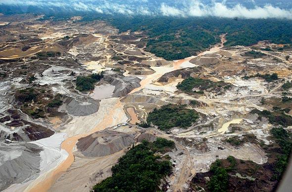 Serfor: Ilegales depredan bosques de la Amazonía
