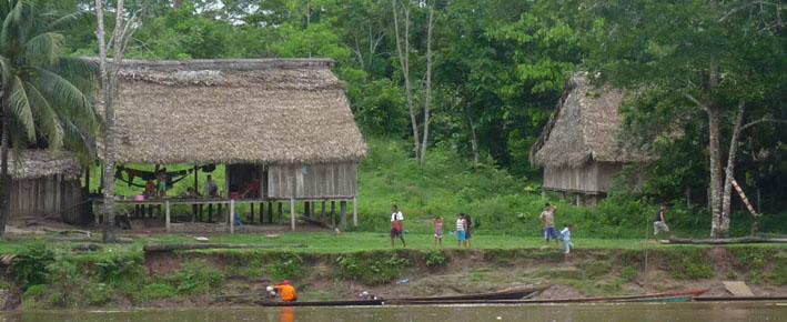Perú: investigadores defienden otorgar títulos de tierra a indígenas para proteger selva tropical