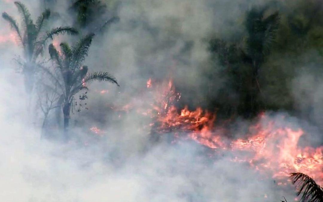 Autoridades y comunidades realizan esfuerzos por extinguir incendio en Satipo