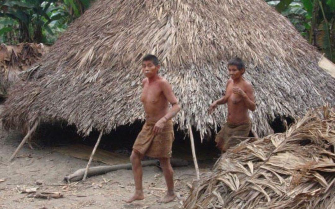 Perú es referente en protección de los pueblos indígenas en aislamiento