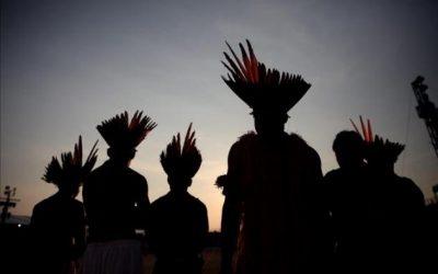 Proteger derechos forestales de los indígenas en América Latina genera beneficios