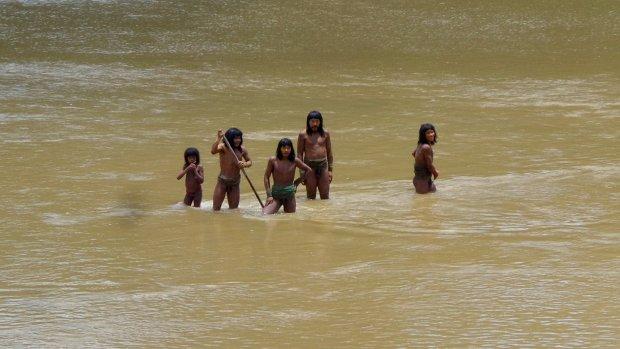 Modificación en leyes de exploración vulnera protección de pueblos indígenas en situación de aislamiento