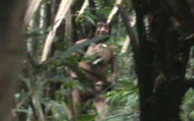 Brasil: arrestada una banda maderera cerca de una tribu no contactada