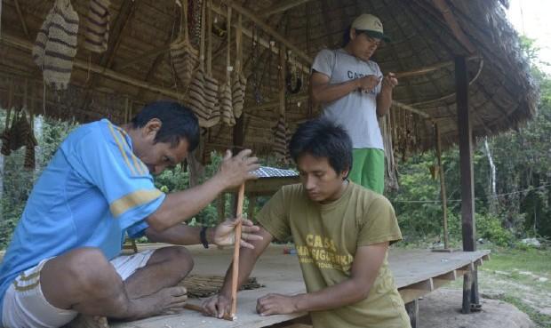 COP21: pueblos indígenas alzaron su voz a favor del medio ambiente