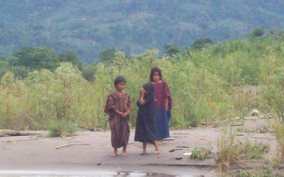 Comunidad Nativa Samaniato impide despojo de su territorio ancestral en juzgado de Corte Superior de Lima