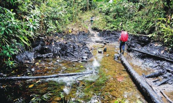 Colombia: Ponencia pide suspender proyecto petrolero en Putumayo