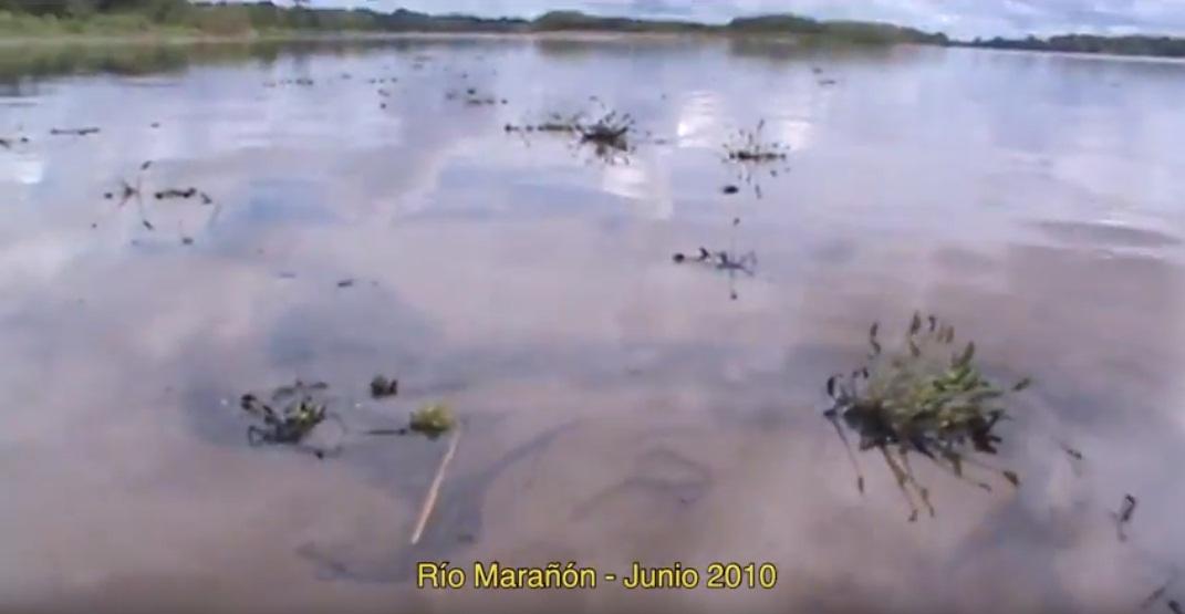 El Petróleo que mata a los Kukama (Derrame Petrolero)