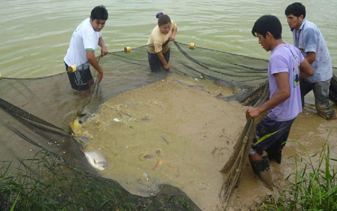 Presentan proyecto de piscigranja en zona afectada por derrame de crudo