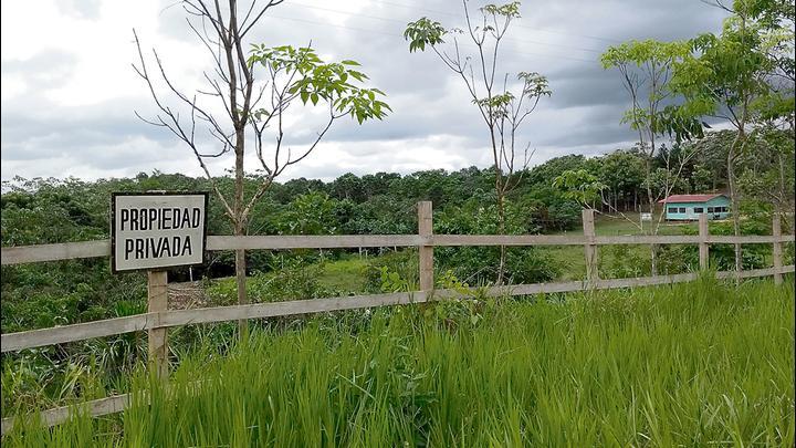 Bonos de carbono: el millonario esquema offshore en la Amazonía peruana