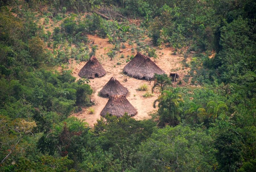 Pueblos indígenas en aislamiento: las áreas de la Amazonía que piden ser protegidas ante amenazas