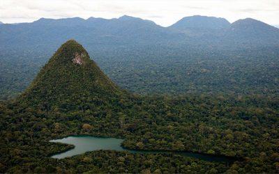 Sierra del Divisor: cinco razones por las que la creación del Parque Nacional es una buena noticia