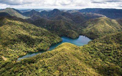 Sierra del Divisor: publican decreto que crea parque nacional