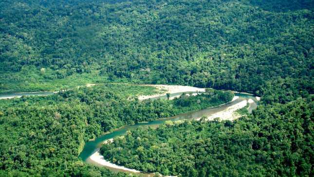 Ministerio de Cultura concluye primera etapa para creación de la futura Reserva Indígena Sierra del Divisor Occidental
