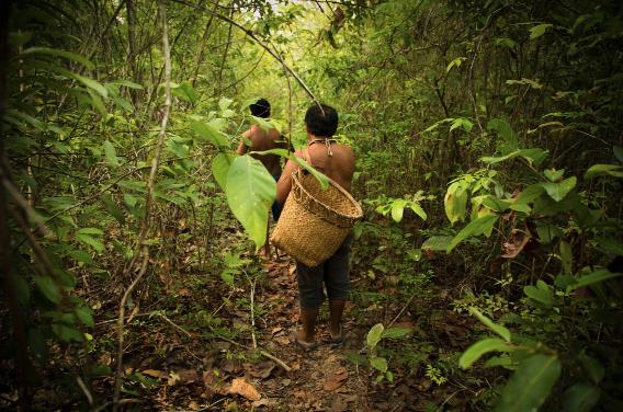 Temas pendientes en el Sistema Interamericano… ¿y en el Perú?