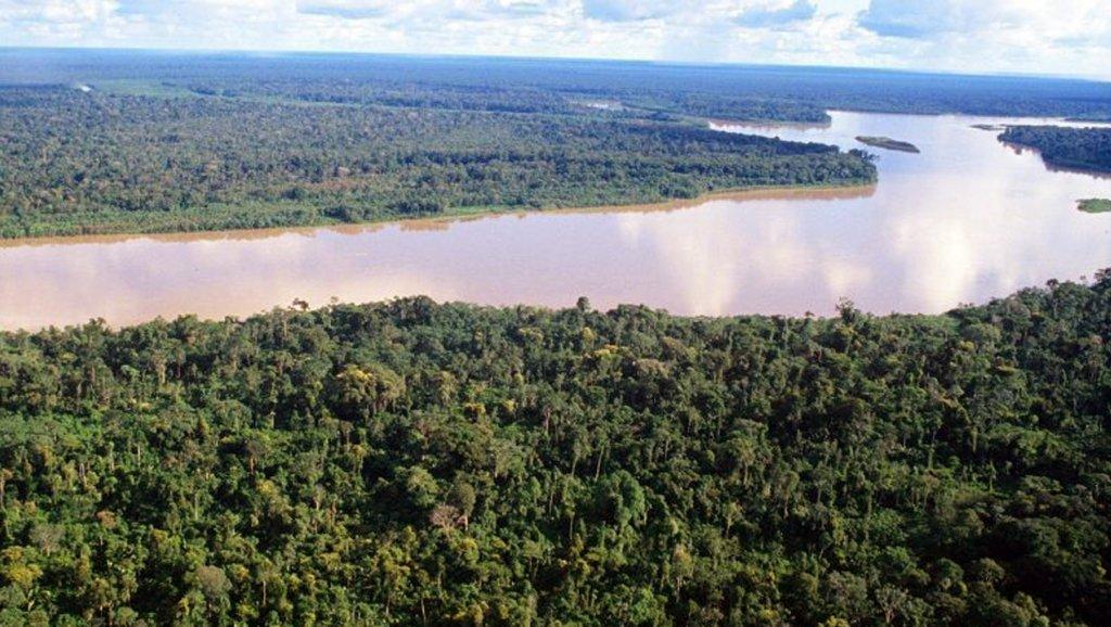 ¿Por qué Perú alega que construir carreteras en la Amazonía no vulnera la legislación ambiental?