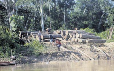 Más de un millón en todo el mundo pide defender al parque Sierra del Divisor