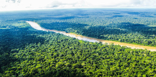 Resurge Amazonía continúa: loretanos en busca de una nueva Amazonía más intercultural, ecológica, inclusiva, sanitaria y participativa