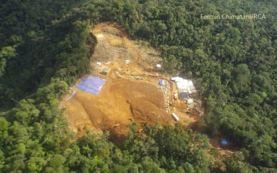 Mineros ilegales agreden a guardaparque de la Reserva Comunal Amarakaeri (Madre de Dios), denuncia SERNANP