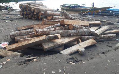 """Condorcanqui: Denuncian que ecuatorianos extraen ilegalmente madera del río Santiago ante """"pasividad e inacción"""" de las autoridades"""