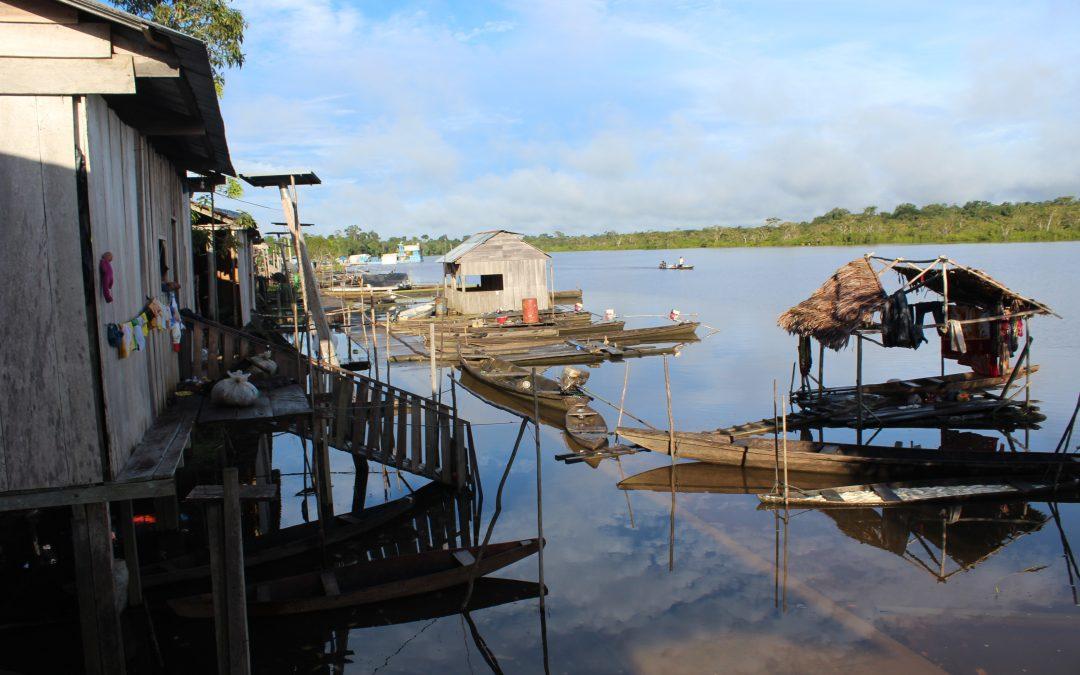 La Amazonía en los planes de Gobierno: la gran relegada