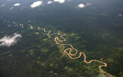 Organizaciones indígenas rechazan aprobación de Proyecto de Ley sobre carretera Pucallpa-Cruzeiro do Sul
